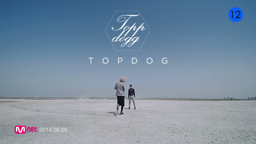TOP DOG - Setting