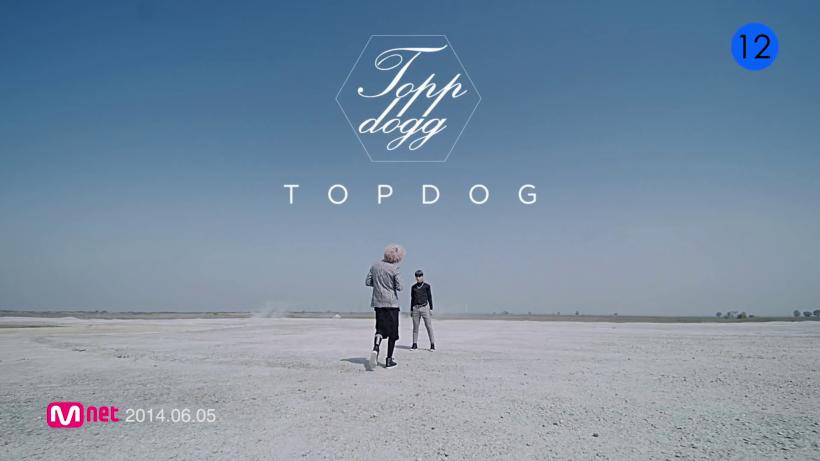 TOP DOG - Setting
